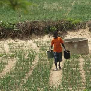 Helping Senegalese farmers with smart solar