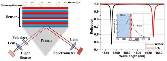 Highly sensitive devices for the detection of biological and chemical compounds