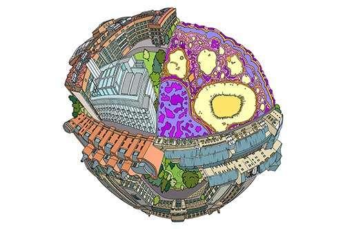 How to meet demand in bacterial 'factories'