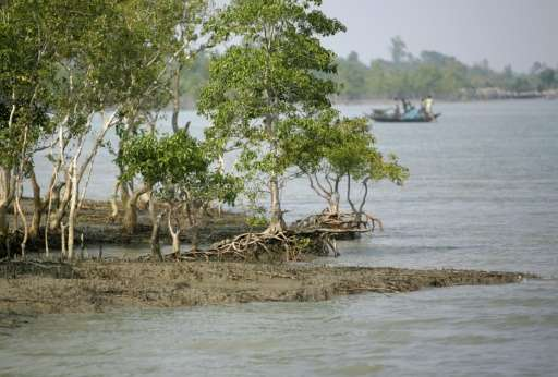 Indian villagers cross a river on a country boat in the Sunderbans, some 125 kms south east of Kolkata on February 10, 2008