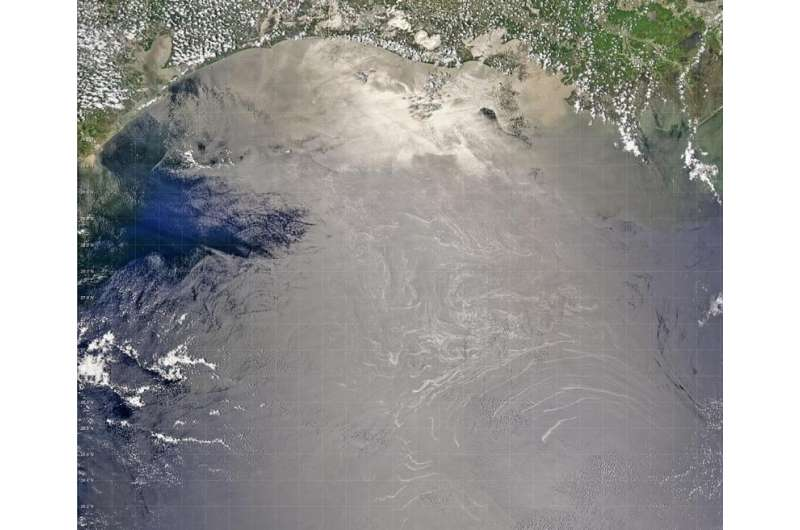 In Gulf Of Mexico, microbes thrive above natural oil seeps