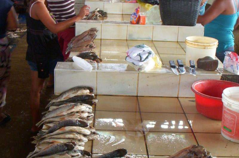 Inland fisheries determined to surface as food powerhouse
