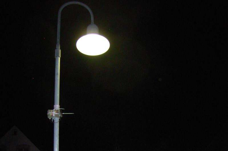 LED-lighting influences the activity of bats