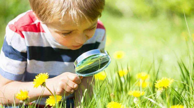 Less is more when learning through science investigation