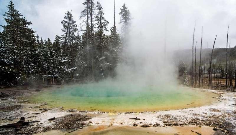 ORNL scientists isolate, culture elusive Yellowstone microbe