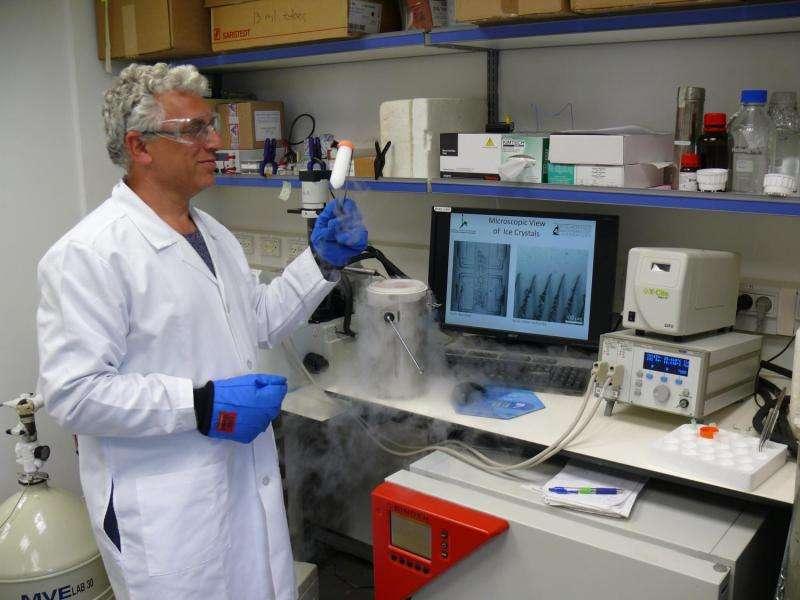 "Scientists ""break the ice"" on organ banking"