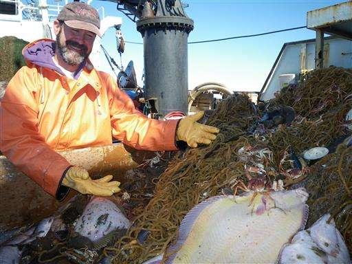 Scientists surveying ocean floor turn up new fish off Alaska