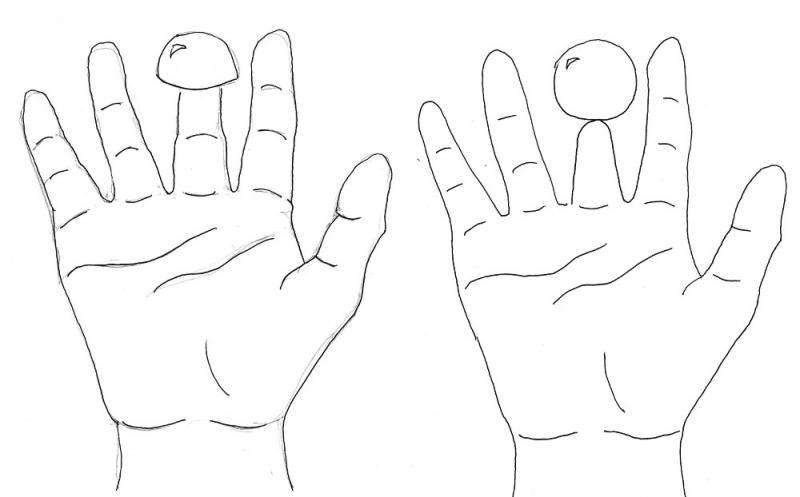 Scientists work their magic on 'shrunken finger illusion'