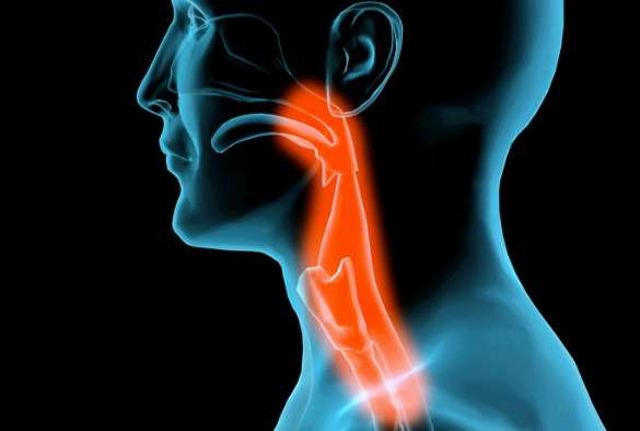 Study questions rise of head and neck cancers in the U.K.