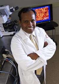 Temple scientists discover structural clues to calcium regulation in cells