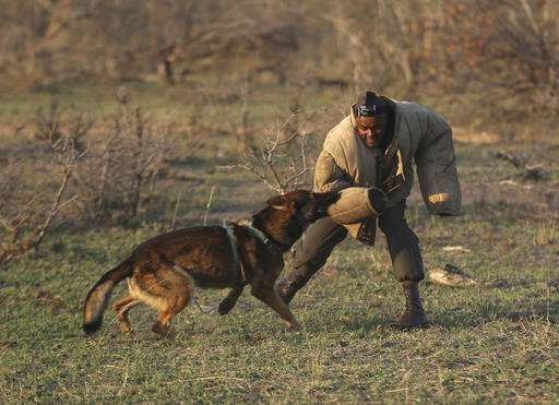 Top African wildlife park looks to villages to stop poachers