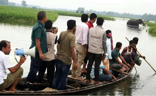 Wildlife officials observe a stranded wild elephant in a watercourse at Sarishabari in Bangladesh's Jamalpur District