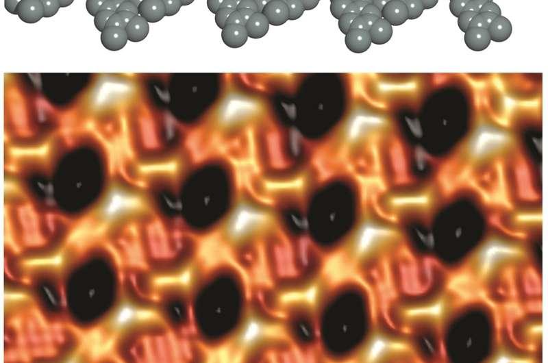 Scientists develop synchronized molecular motors