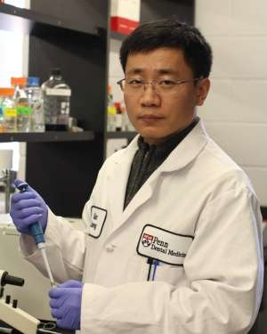 Research team uses nanoparticles to break up plaque and prevent cavities
