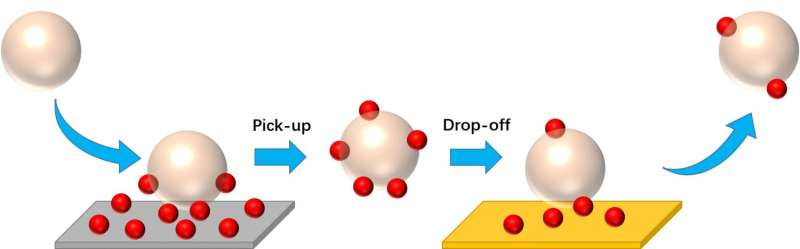 'Nanoparticle taxicab' materials can identify, collect and transport debris on surfaces