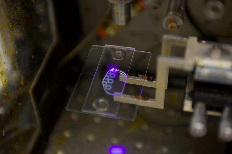 3-D printed polymer turns methane to methanol