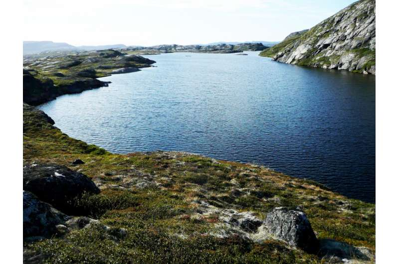 A history of snowfall on Greenland, hidden in ancient leaf waxes