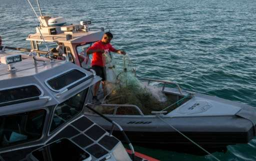 A member of the Mexican Navy destroys illegal fishing nets on the Cortes Sea in San Felipe, Mexico