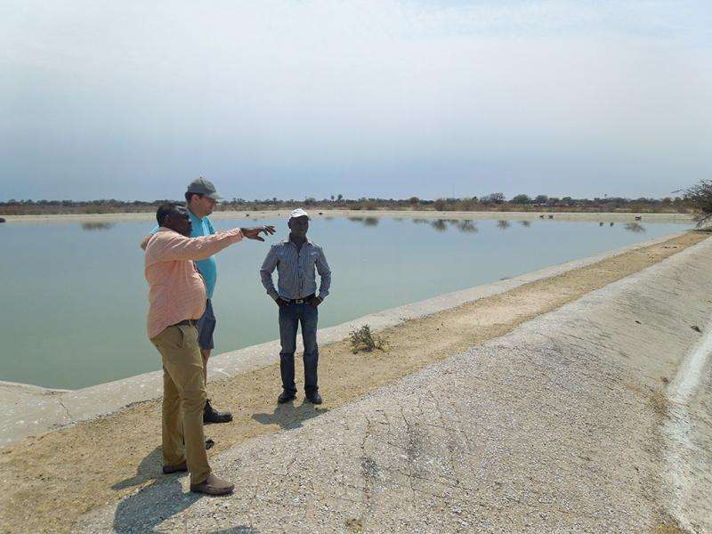 A stabilisation pond system in Namibia increases yields