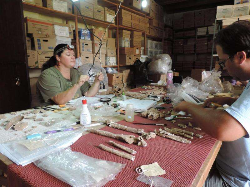 Bioarchaeologist studies dental remains to explore the ancient people and culture of Oaxaca's Lower Río Verde Valley