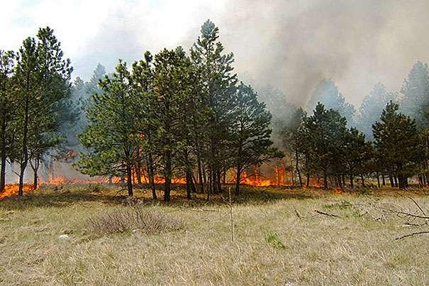 By 2050, the U.S. wildfire season will be three weeks longer, up to twice as smoky