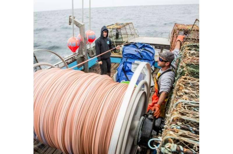 Dangerous fishing may be endangered