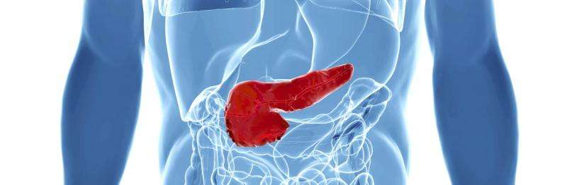 Diabetes drug found not to cause pancreatic cancer