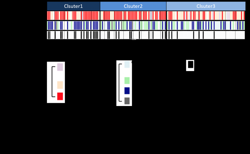 Discovery of the genes responsible for esophageal cancer