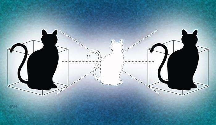 Doubling down on Schrödinger's cat
