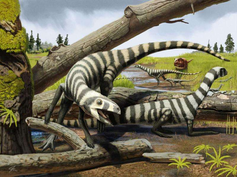 Fossil discovery suggests size poor predictor of maturity in ancient reptiles