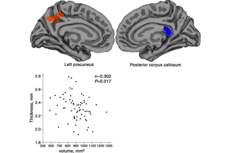 Imaging shows impact of PTSD in earthquake survivors
