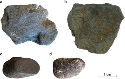 Neanderthals may have deliberately sourced manganese dioxide for use in fire making