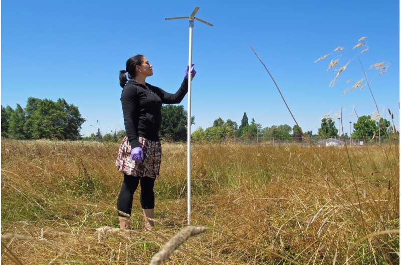 Oregon research points to mechanisms on why 'green' helps in urban life