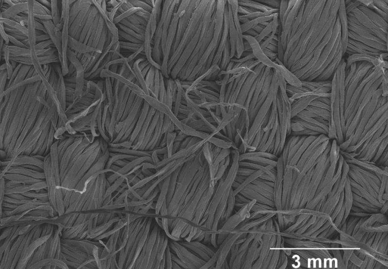 Environmentally-friendly graphene textiles could enable wearable electronics