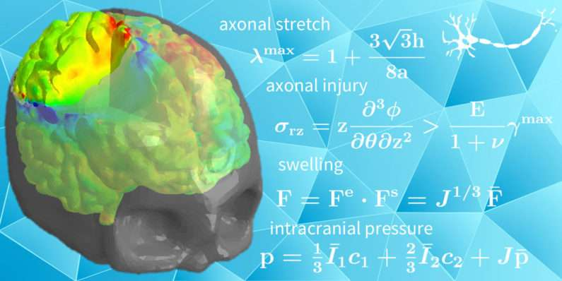 Research team simulates the inner strain on the brain to better plan surgery