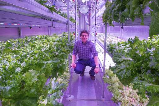 Arctic farming: Town turns to hydroponics for fresh greens