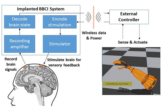 For the first time, brain surface stimulation provides 'touch' feedback to direct movement