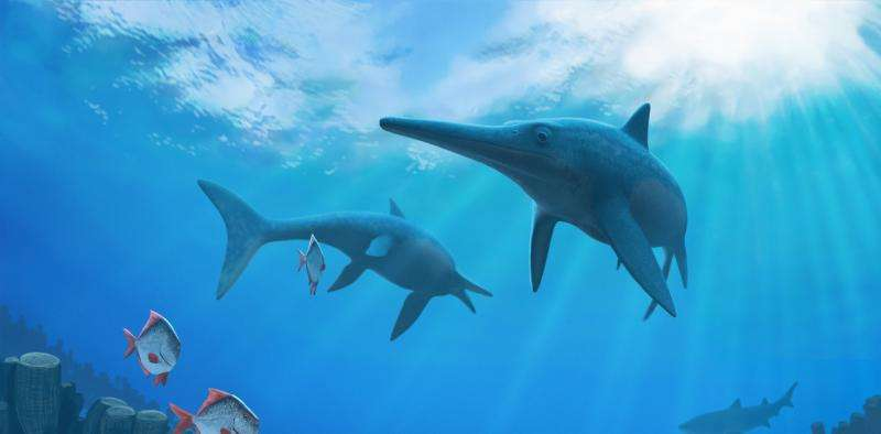 How climate change killed the dinosaurs' underwater cousins