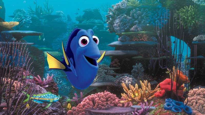 Marine scientist advises parents to leave 'Dory' on the big screen