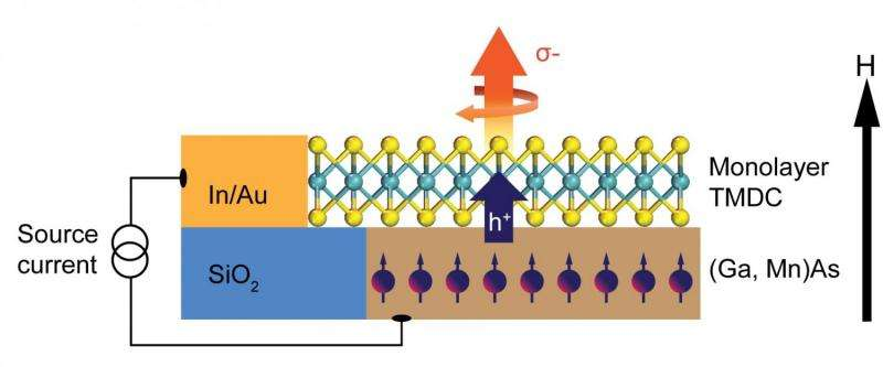 Scientists push valleytronics 1 step closer to reality
