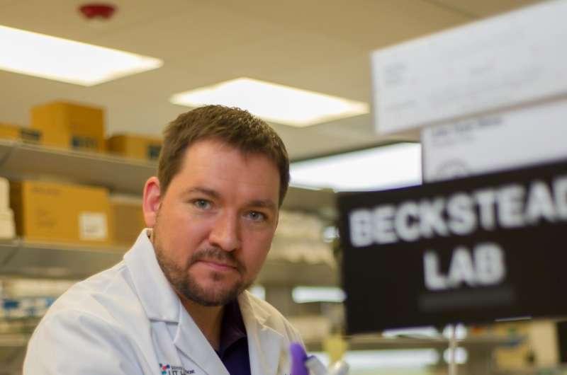 Study shows how neurons decline as Parkinson's develops