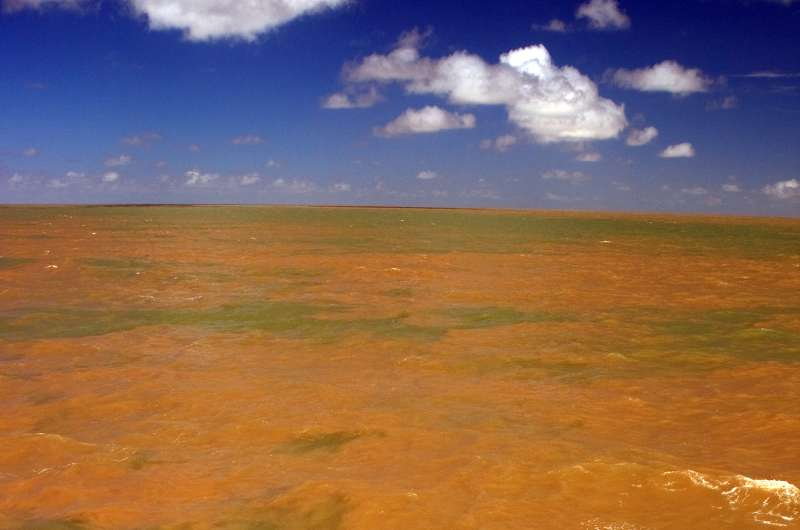 Scientists discover new reef system at mouth of Amazon River
