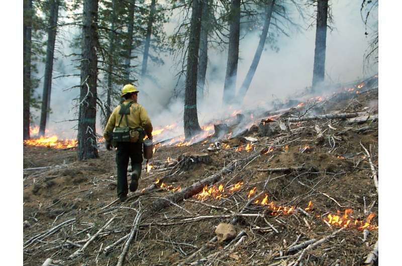 Forest fires in Sierra Nevada driven by past land use