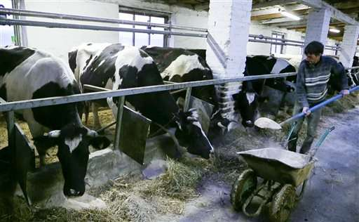 Test finds Chernobyl residue in Belarus milk