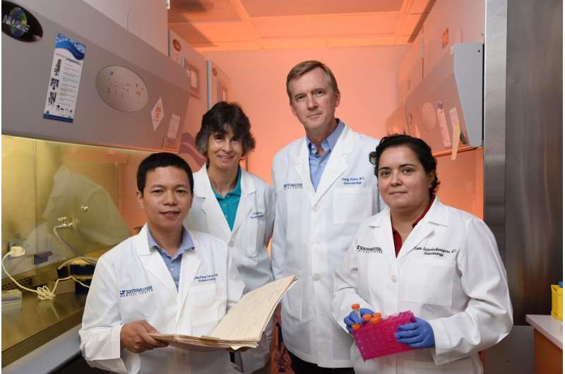 UTSW research identifies protein that promotes the breakdown of fat