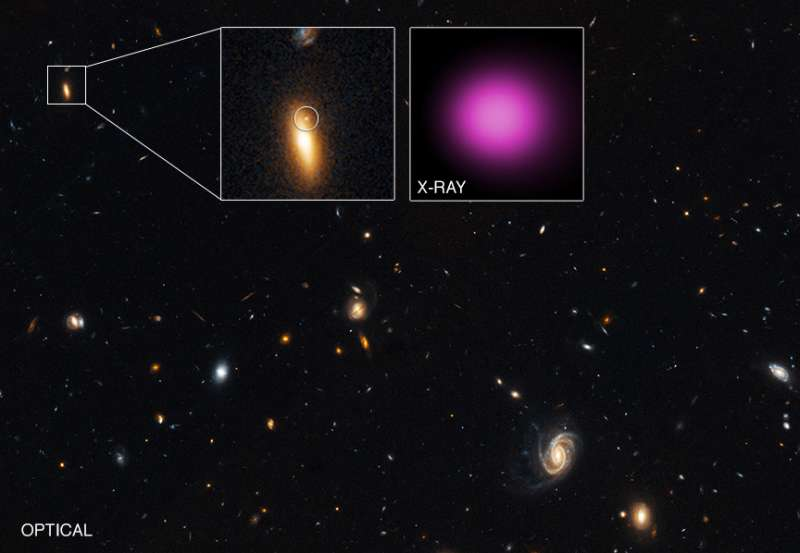 X-ray Telescopes Find Evidence for Wandering Black Hole