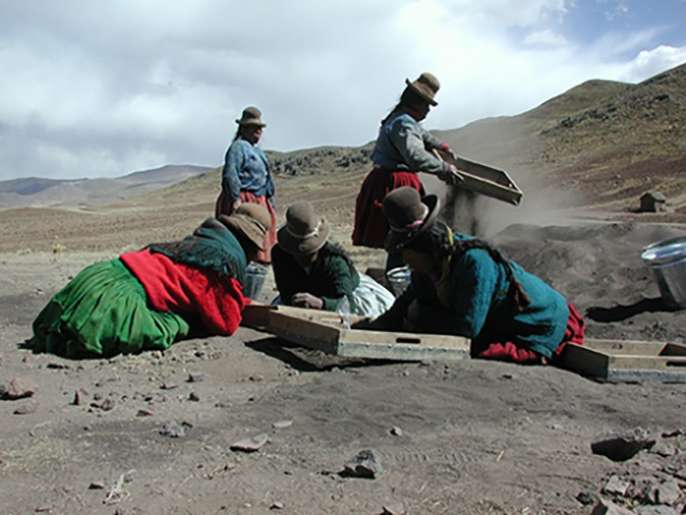 Researchers trace roots of potato farming to Andes