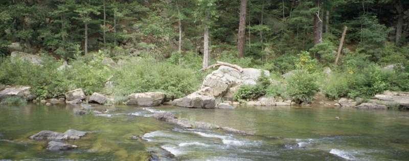 How climate change dries up mountain streams