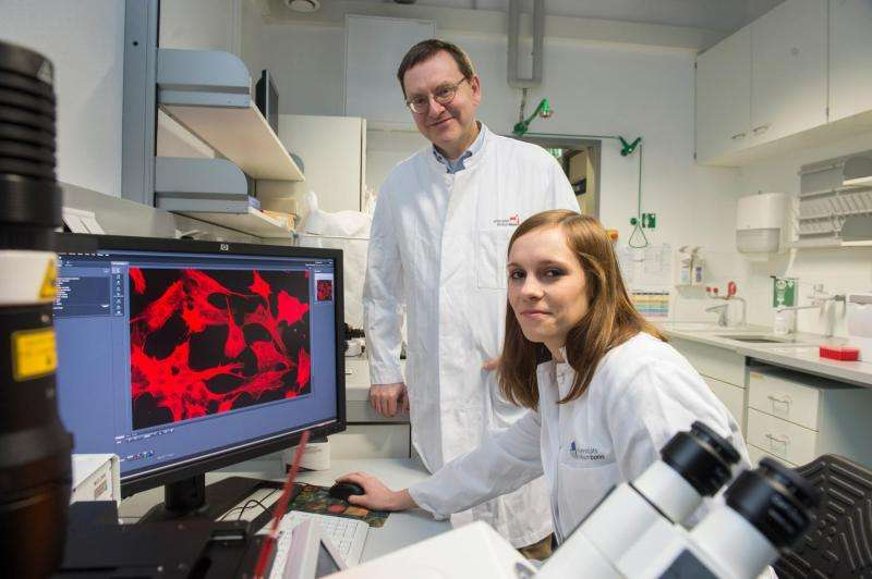 Researchers at the University of Bonn boost fat-burning