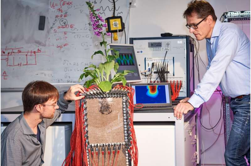 Researchers image roots in the ground